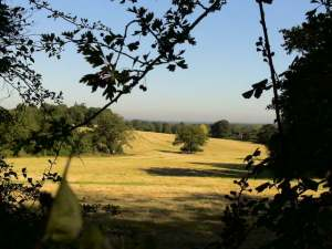 Farmland (c) Jane Risdon 2012