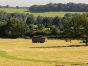 Making hay (c) Jane Risdon 2012