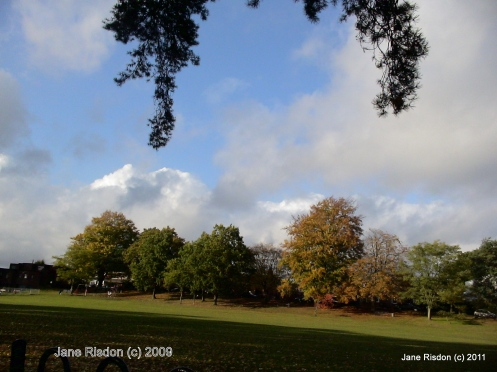 Autumn 2009 taken by me (c) Jane Risdon 2009