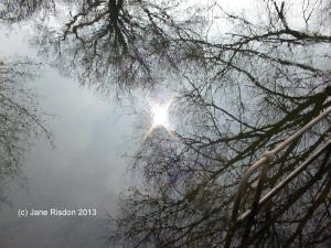 Reflection (c) Jane Risdon 2011