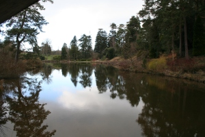 Bedgebury National Pinetum (c) Jane Risdon 2014