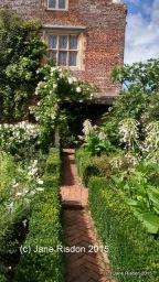 Whte Garden (c) Jane Risdon 2015