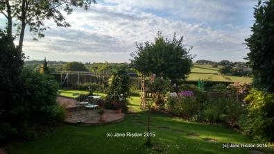 Family garden (c) Jane Risdon 2015