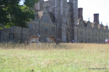 Knole House and Park (c) Jane Risdon 2015