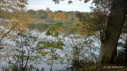 Virginia Water Lake (c) Jane Risdon 2015