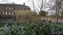 Huge Estate and Manor Hoouses Ampney Parva (c) Jane Risdon 2016