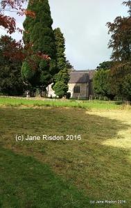 (c) Jane Risdon 2016