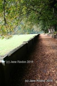 Paradise Walk (c) Jane Risdon 2016