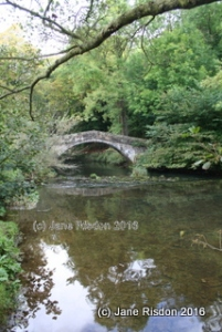 Bertram's Bridge (c) Jane Risdon 2016